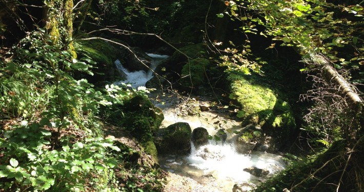 waterfall (4)
